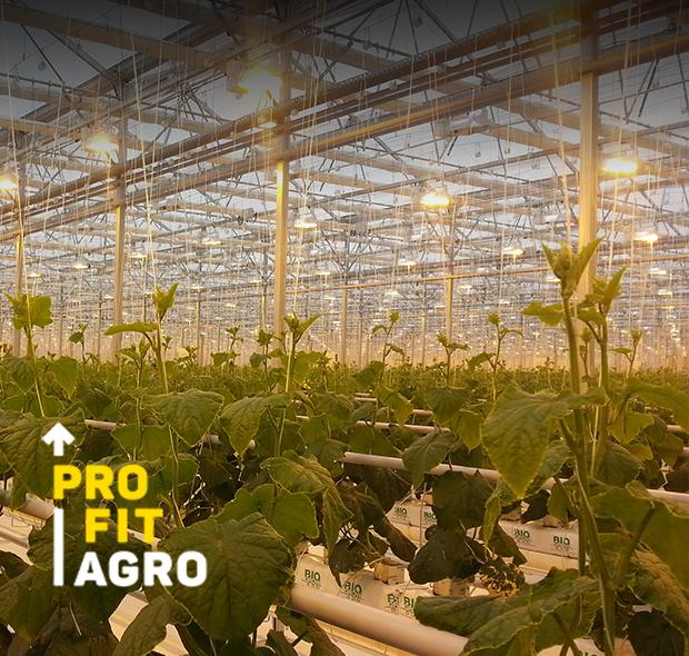 PROFIT AGRO- ALG FARM